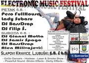 Electronic Music Festival:Pero Full House,DJ BassDrop,DJ Filip (5.8.'11